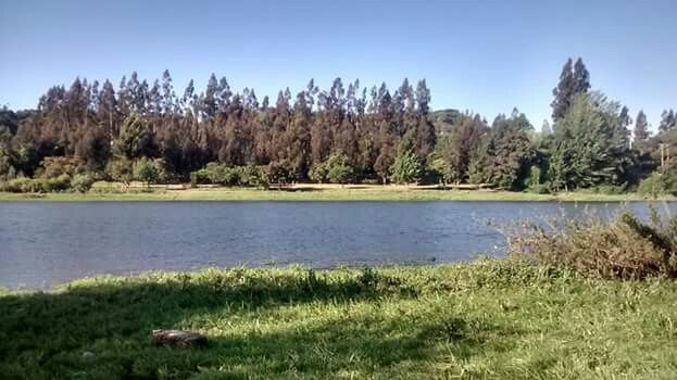 Rivera río Rapel (Chile)