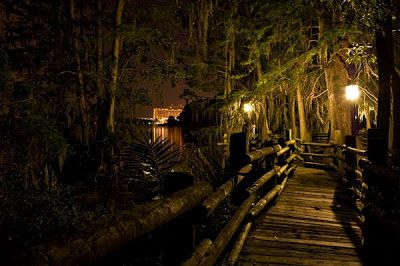 The Photography of Shane Perez: Discovery Island
