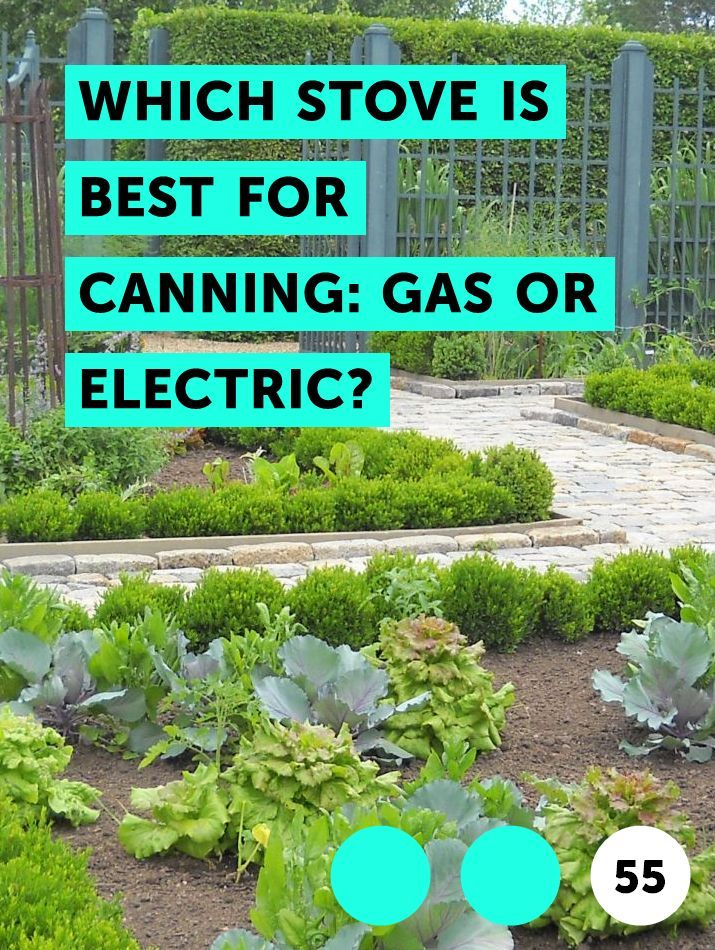 Which Stove Is Best For Canning Gas Or Electric Gardening