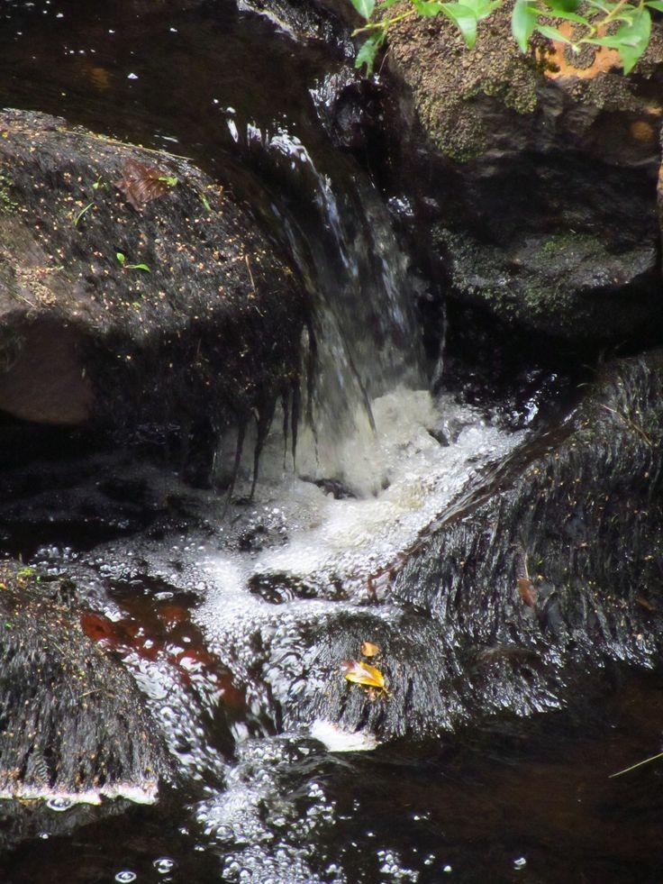 Vattnet i bäcken