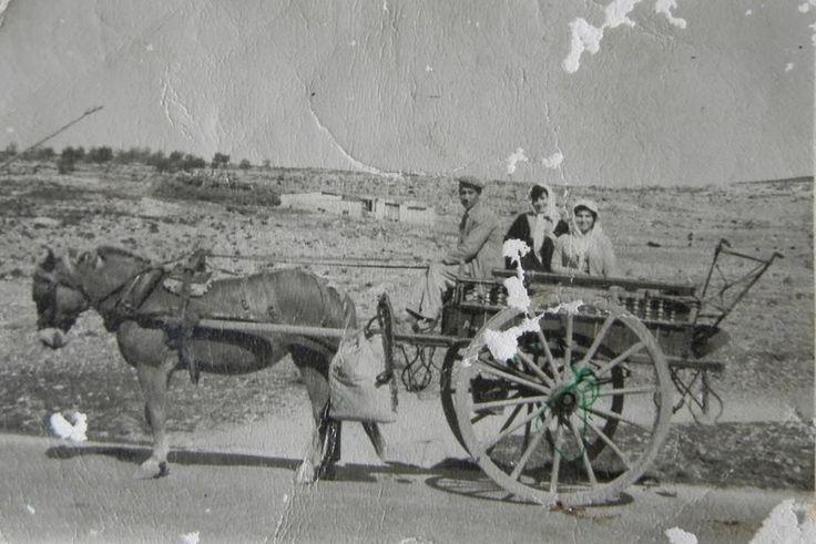 αλογο με καρο καπου στην Λ.Ιπποκρατους ...δεκαετια του 50
