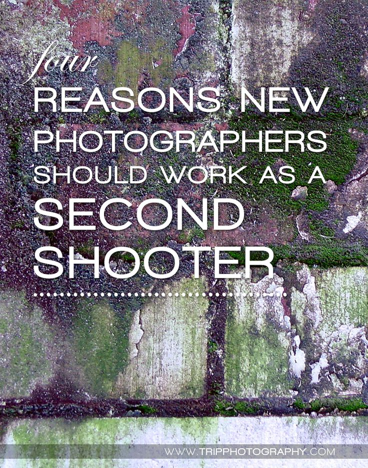 Four reasons new photographers should work as a second shooter to another professional photographer | By Christine Tripp | Tripp Photography