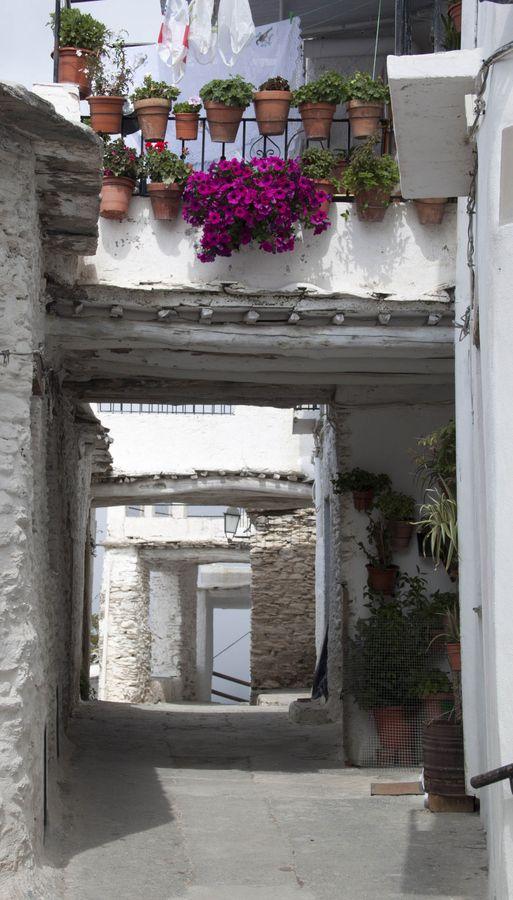 La Alpujarra, Andalucia, Spain