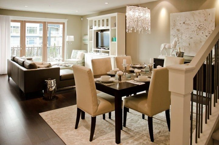 Contemporary Living Room And Dining Room Interior Combo