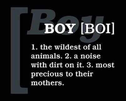 Definition of a boy