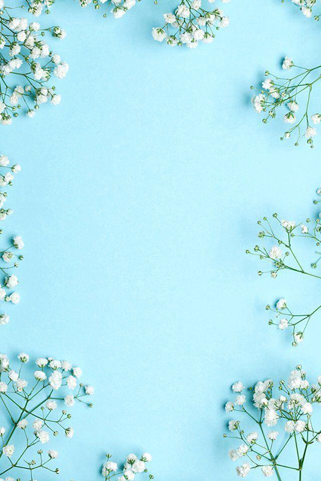 Adoro azul... E flores Mosquitinho!!!