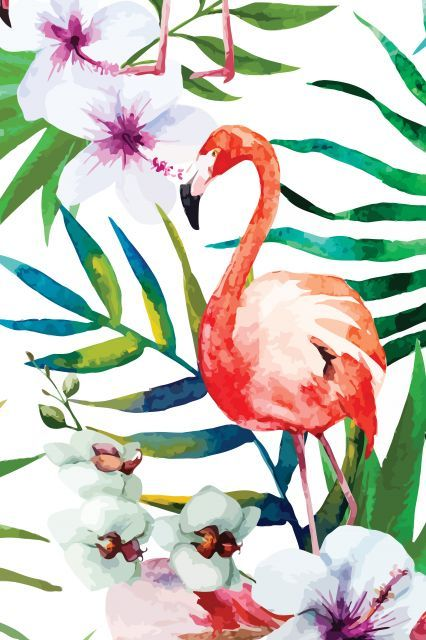Poster - Tropical Flamingo