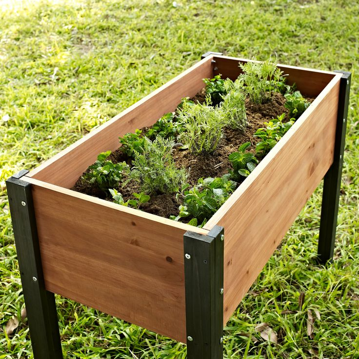 Coral Coast Wood Elevated Garden Bed - 40L x 20D x 29H in. - Raised Bed & Container Gardening at Hayneedle