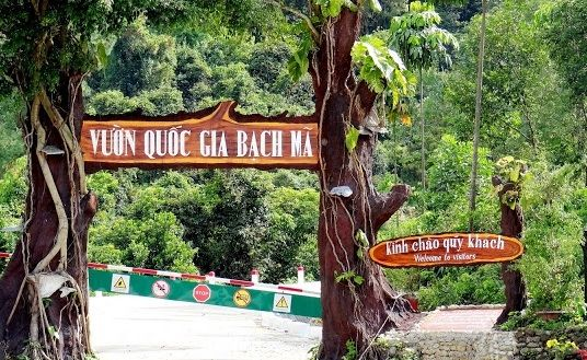 Explore Bach Ma National Park 3Days/ 2Nights