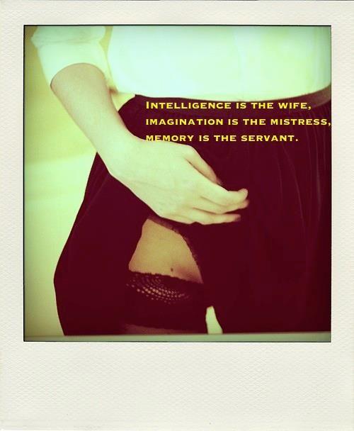 """intelligence, imagination and memory"""