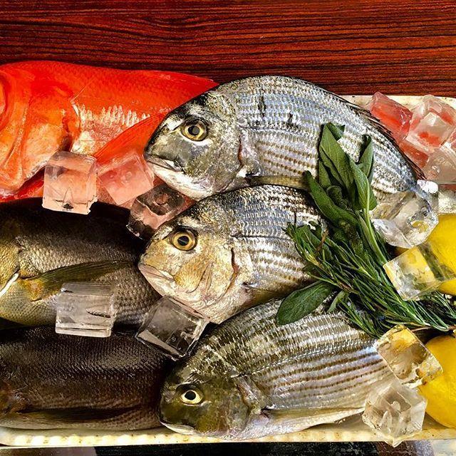 本日ディナーのオススメ!! ラゴッチャでは秋川牛の他に、皆さまに大好評の漁港直送鮮魚もございます!今回は静岡県伊東の漁港からお魚届いております🐟鮮度バツグンです💯 ローズマリー、タイムと一緒に焼き上げる香草ロースト! アサリ、ムール貝、お魚の旨味を存分に味わって頂けるアクアパッツァ! などのお料理で楽しんで頂きたいと思っております😋 スタッフ一同お待ちしております! #金目鯛#イサキ#鮮魚 #魚料理#アクアパッツァ #白金台 #ラゴッチャ東京#lagocciatokyo #イタリアン#イタリア料理#italian #肉#秋川牛#黒毛和牛 #ワイン#wine#日本ワイン