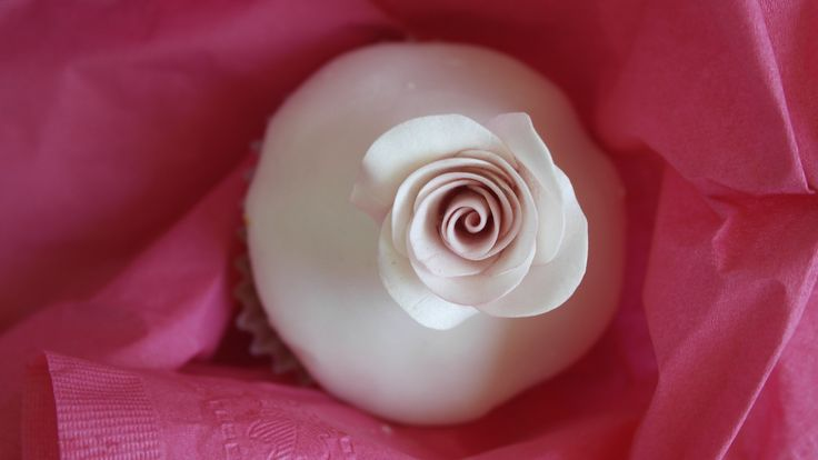 Cupcake floral.