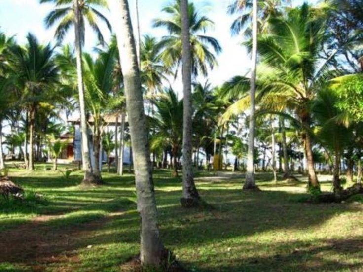 Terrenos com 1000M2 em condominio fechado.  Saber mais aqui - http://www.imoveisbrasilbahia.com.br/interior-da-bahia-terrenos-com-1000m2-em-condominio-fechado-a-venda