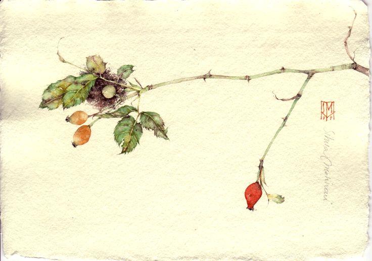 PRIMO AUTUNNO. acquerello su carta a mano, 14x21 cm circa, anno 2006