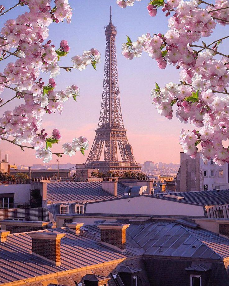 Paris Main Attractions In One Day: The Eiffel Tower, Paris, France, Landmark, Archtecture