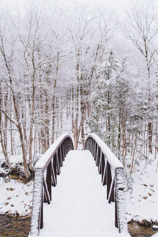 Snow is beautiful..