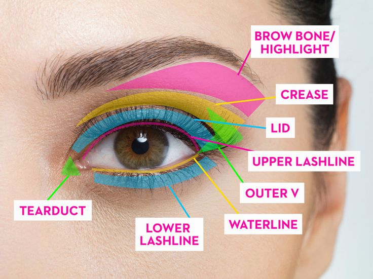 Best 25 blending eyeshadow ideas on pinterest smoky eye the complete guide to where to put your eye makeup ccuart Images