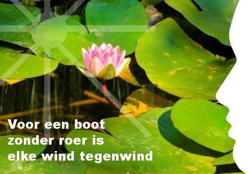 Mijn inspiratie: Voor een boot   zonder roer is   elke wind tegenwind