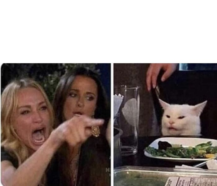 The Most Popular Meme Templates Of 2019 52 Images In 2020 Meme Template Cat Memes Confused Meme