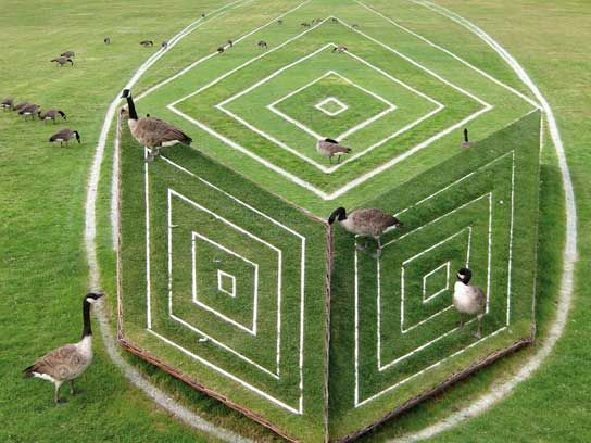 This Optical Illusion Art Will Expand Your Mind|Reader's Digest Where Are We? Parc de Bagatelle, Paris, 2010 © François Abélanet The geese are perhaps less confused by this 2010 anamorphic art illusion, as viewed from the front in the Parc de Bagatelle, Paris.