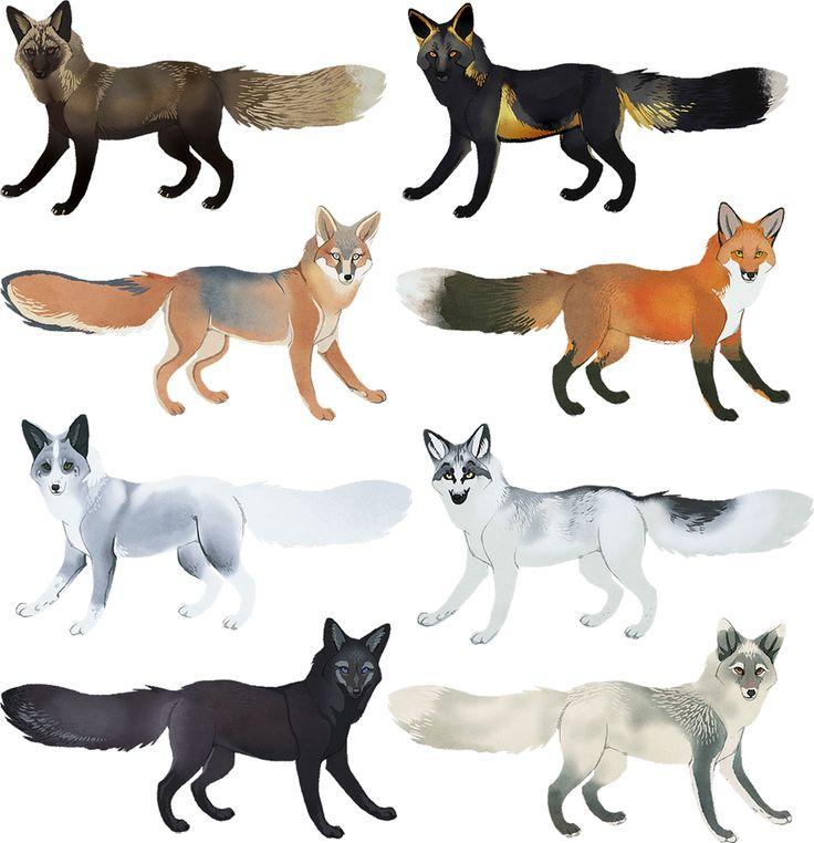 Fox Colors I by *CoyoteMange on deviantART