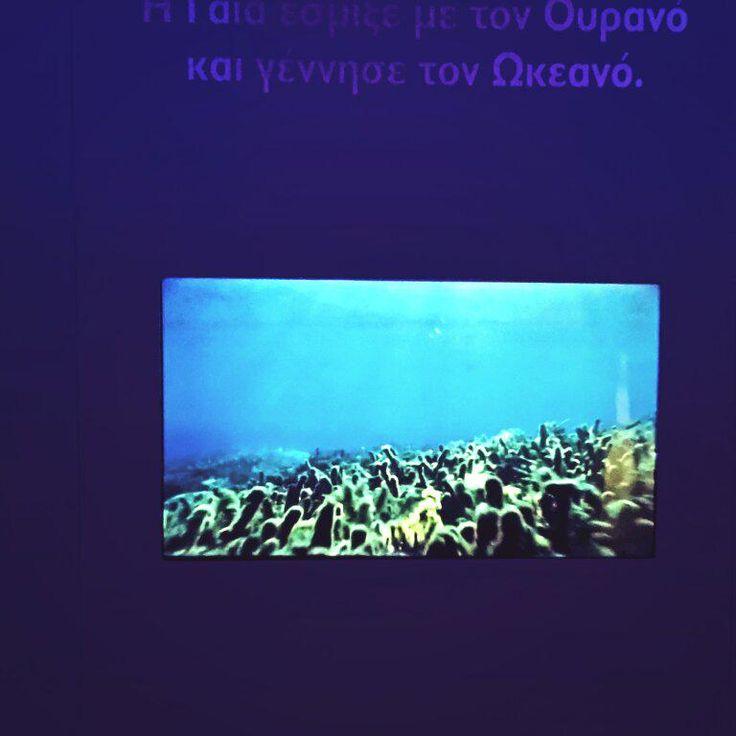 Dive...@Cretaquarium @1World1Ocean @DiscoverGRcom @VisitGreecegr @Greek_Spirit