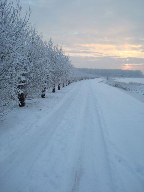 Villa Westend - Winter wonderland