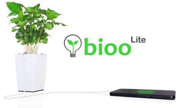 Prendere l'elettricità direttamente dalle piante: presto sarà possibile grazie a Bioo Lite.
