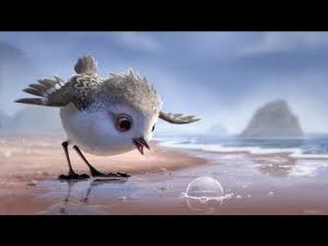 Watch this delightful Pixar short and use it as the starting point for learning in different areas of the curriculum!