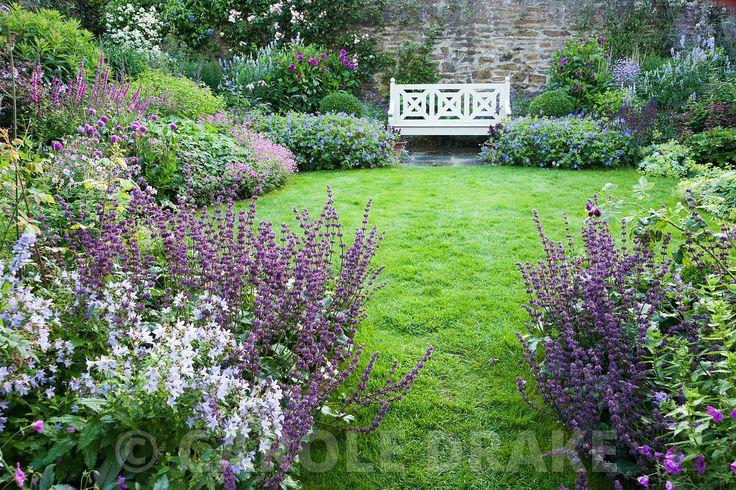 The Walled Garden planted with purples, pinks and blues including campanulas, Geranium Patricia = 'Brempat', Salvia verticillata 'Purple Rain', dahlias, galegas and Geranium Rozanne = 'Gerwat' each side of the wooden bench. Bosvigo, Truro, Cornwall, UK