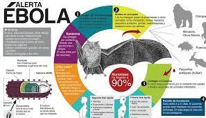 Resultado de imagen para infografia periodistica 2015