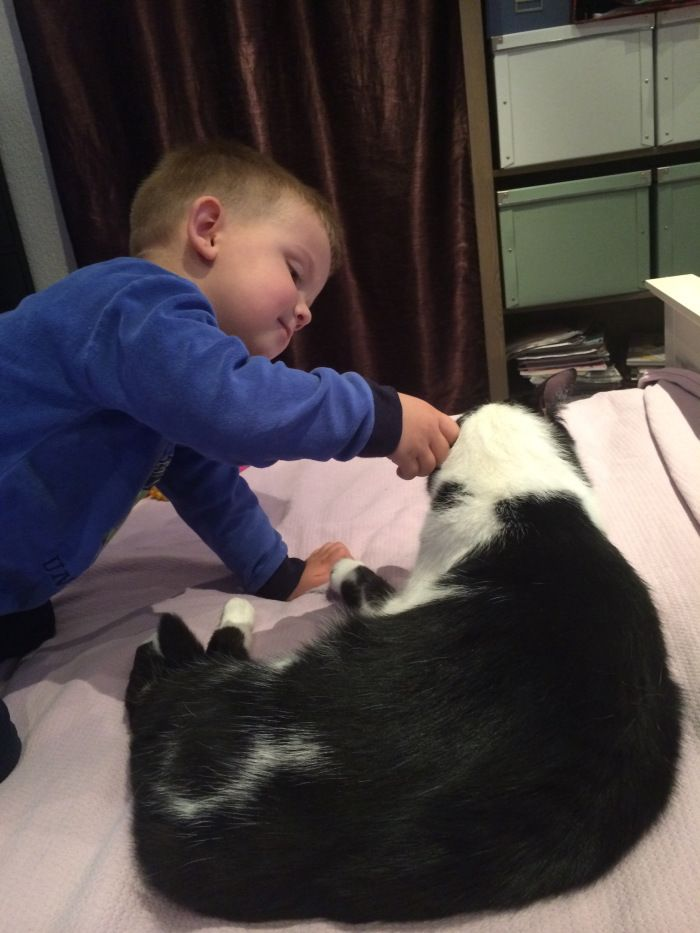 My son and our cat Mickey