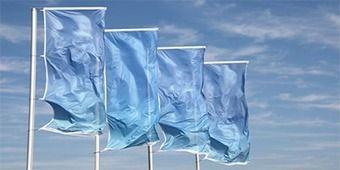 Energy-Harvesting Piezoelectric Flags