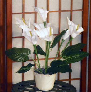 Cala Lily White Artificial Silk Plant in a Decorative Plastic Container.