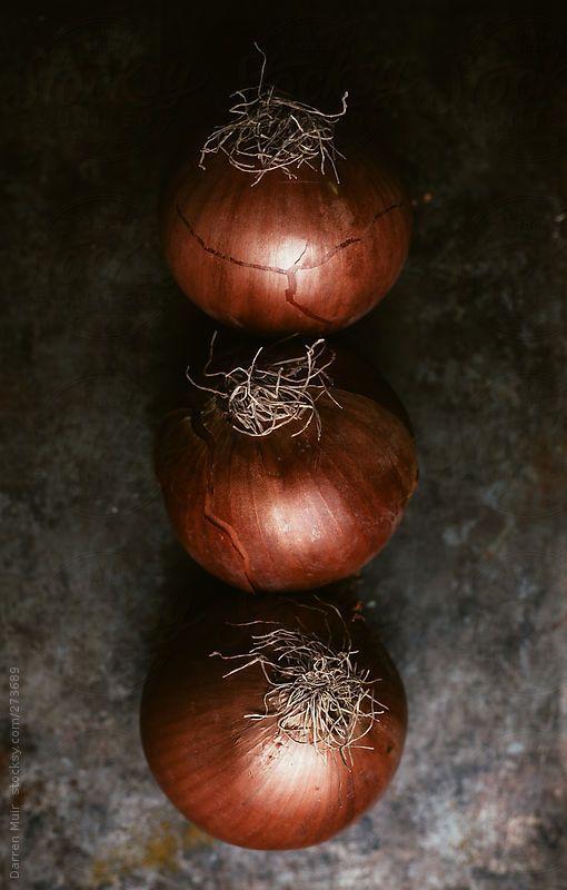 Onions by Darren Muir | Stocksy United: