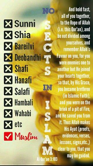 No sects in Islam . Quran - 3:103 . No sunni, shia, bareilvi, shaafi, hambali, wahabi, etc. [ Allah God Islam Quran Muhammad (peace be upon him) Jesus (peace be upon him) Hadith Muslim Islamic Quotes ]