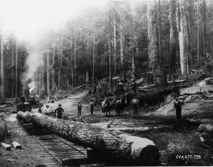 South Granville Street, 1895. Logging the road to the Fraser River (Eburne)  The road was called Center Street and later became Granville Street in 1907. Vancouver, BC