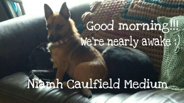 #morning #goodmorning #niamhcaulfieldmedium