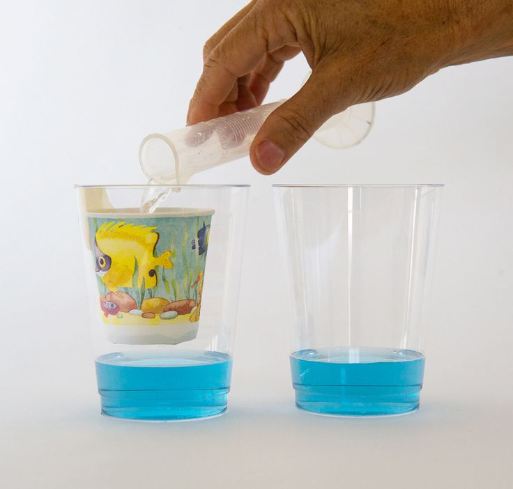 17 best science project images on pinterest science projects create a carbon dioxiderich atmosphere in a cup and watch how it diffuses into the water beneath it causing the water to become more acidic ocean sciox Images