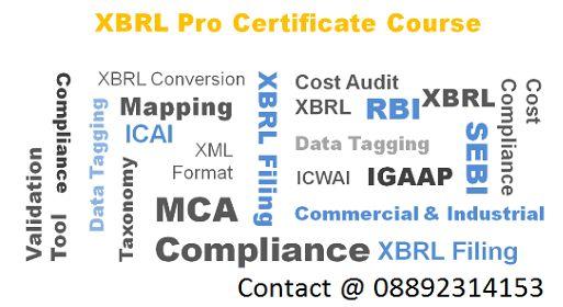 mca xbrl filing software vendors