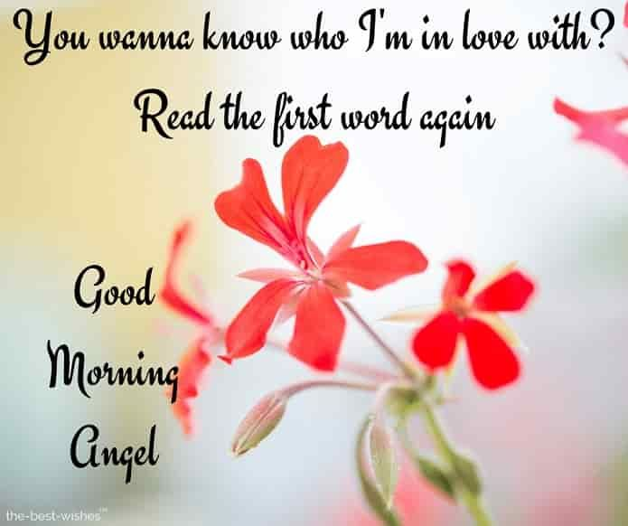 120 Best Good Morning Angel Images Good Morning Wishes Love Good Morning Love Messages Good Morning Sweetheart Images