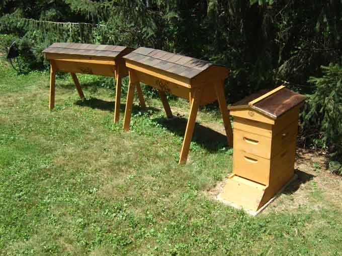 17 Best Images About Bee Hives On Pinterest Gardens Bee