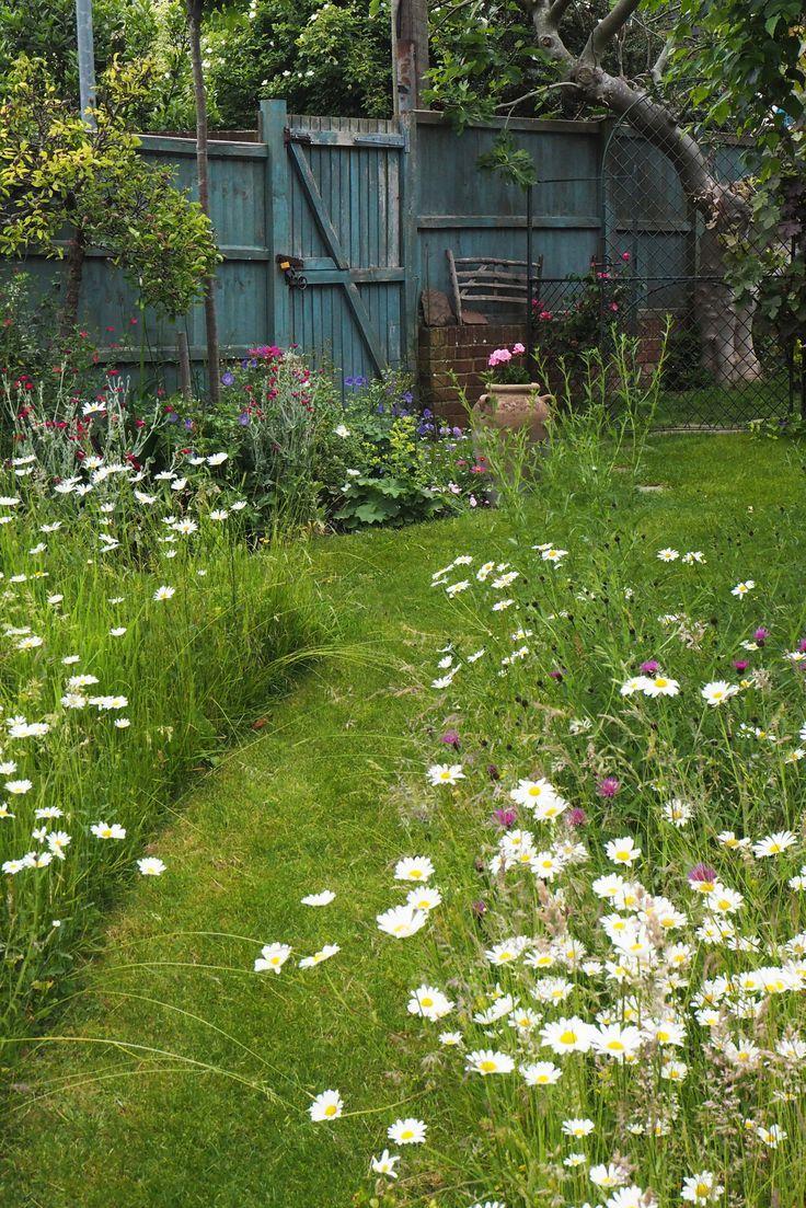 To create a beautiful mini-meadow garden