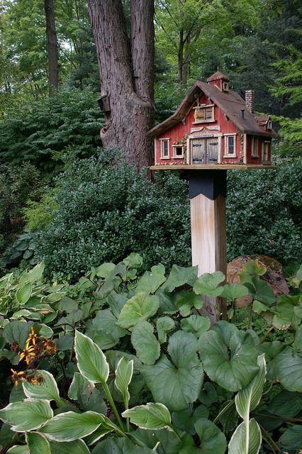 Bird house & shade plants!