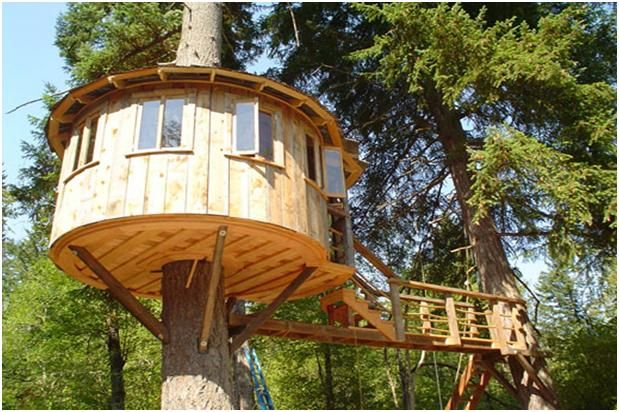 Simple treehouse natural living pinterest pictures for Treehouse designers