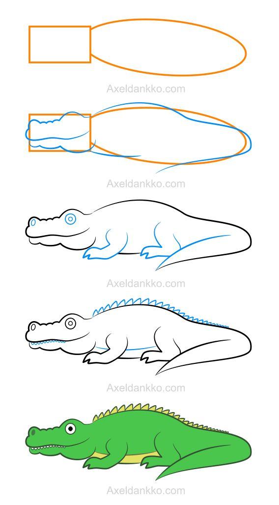 How to draw a crocodile - Comment dessiner un crocodile