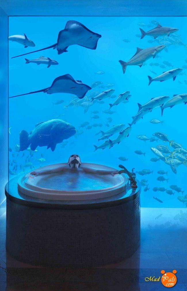 Underwater hotel in dubai fascinating pinterest for Hotel bajo el mar dubai