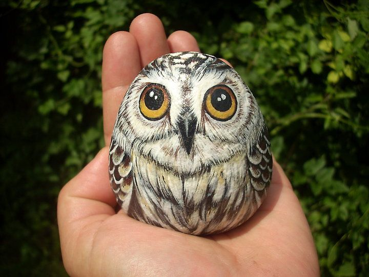 Owl painted on stone with acrylic colours.