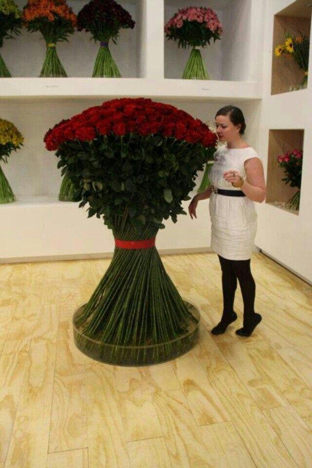 Pin By Balikesir Cicek On Balikesir Cicekcilik Gul Rose Pinterest Flowers Beautiful Flowers And Red Roses