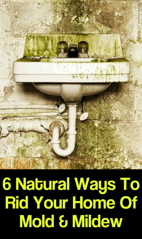 6 Natural Ways To Rid Your Home Of Mold & Mildew